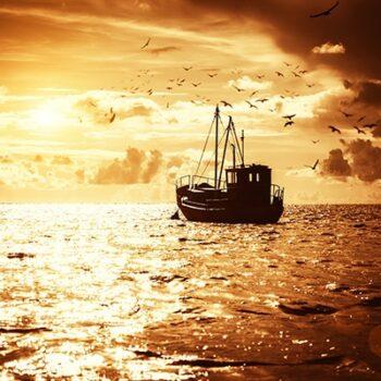 wir-schuetzen-die-Meere